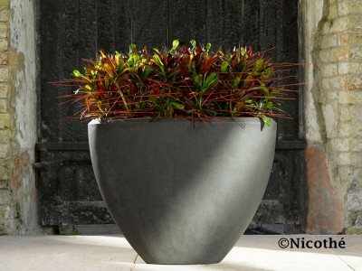 plantenarrangement-rustiek