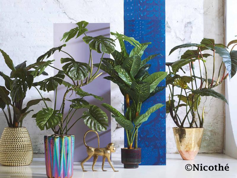 Zijde planten Drunen